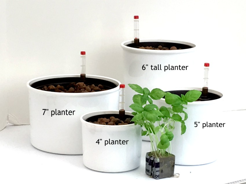 Hydroponic Herbs - assortment of hydroponic planters