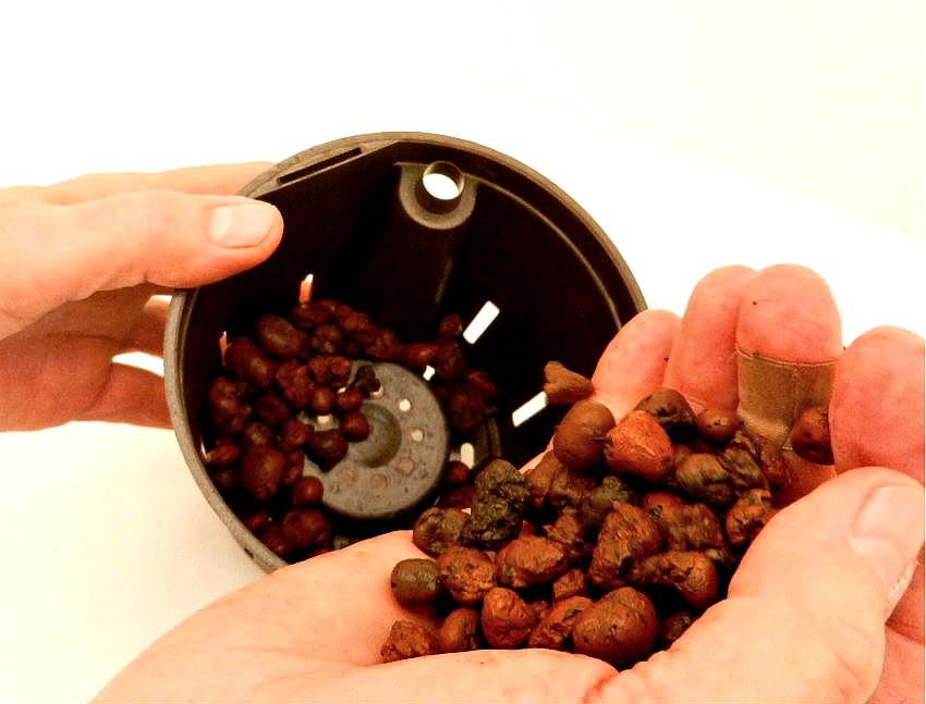 Hydroponic Herbs - preparing hydroponic pot